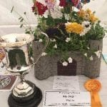 Success at the Royal Windsor Rose and Horticultural Show – Saturday 16th July