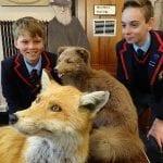 Year 8 visit Eton Natural History Museum