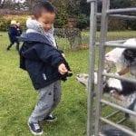 Mobile Farm Visits Nursery
