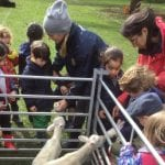 Mobile Farm Visit Kindergarten